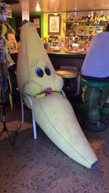 banana 12
