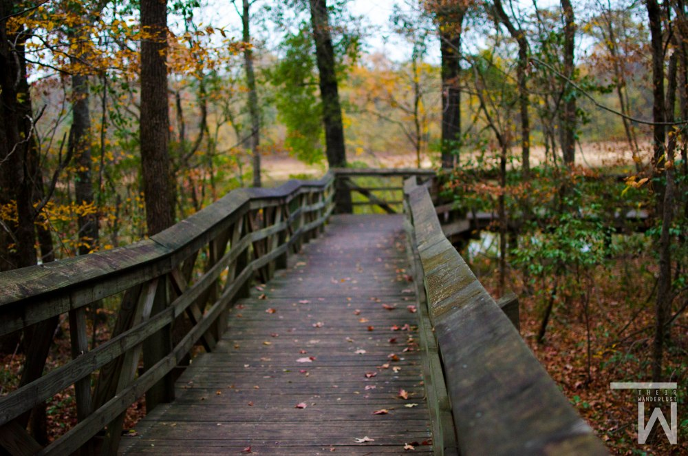 Moundville Archaeological Site - Moundville, Alabama #travel #nature #photography